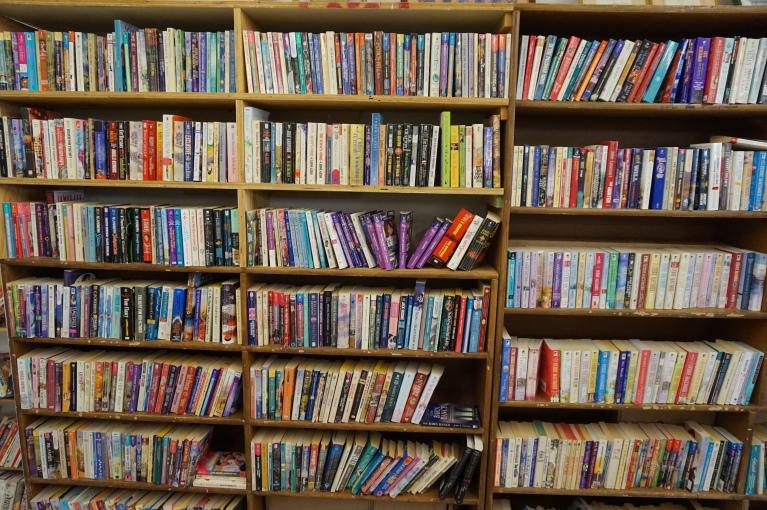 Thriftstore Bookshelf