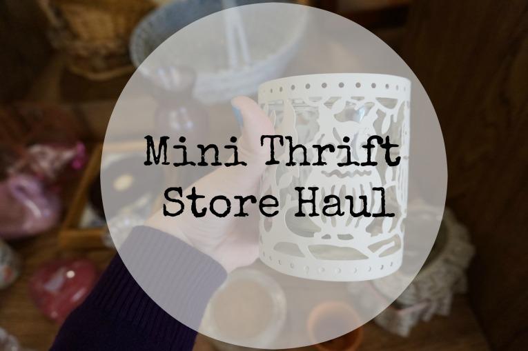 Mini Thrift Store Haul