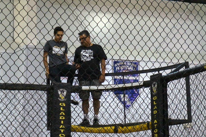 Photo tower MMA cage