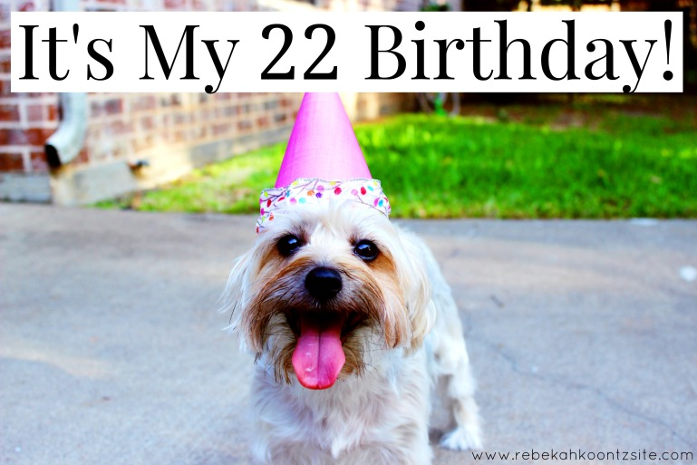It's my birthday humor laugh funny 22 grown up adult
