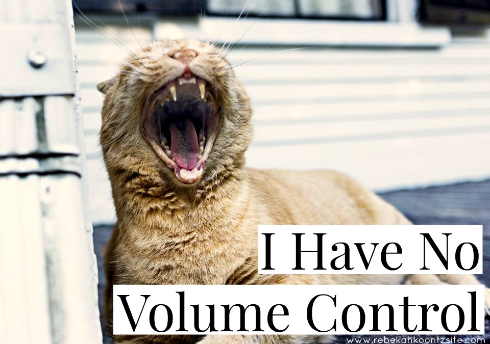 I have no volume control loud shout mouth humor funny cat