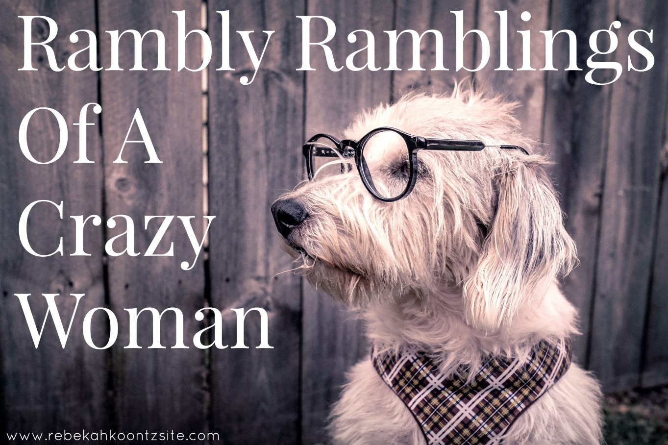Ramblings of a crazy woman humor life lifestyle blogger blog Rebekah Koontz